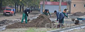 В Измаиле в Клушинском сквере началась высадка деревьев